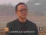"""《绿色时空》 20140323 药膳""""加盟""""大雁赚得意外财富"""