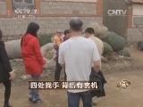 杨华古董致富经,四处找手 背后有玄机(20140512)