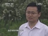 [农广天地]康大1号肉兔配套系的养殖技术(20140603)