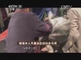 王琼养猪致富经,倔强女人死里逃生的创业传奇(20140609)