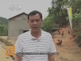 象洞鸡养殖技术农广天地,象洞鸡养殖技术(20140727)