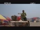 郑林林致富经,在倔骆驼身上发现的新商机(20140820)