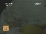 [农广天地]柚子皮深加工技术(20140821)