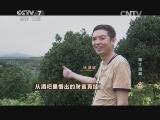 徐鸿斌种丹桂致富经,从酒吧里悟出的财富真经(20140825)