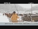 许群群养牛致富经,土家女歌星住洞里养牛