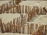 [第三极]第二集 一片热土 人们治理风沙以使土地回归富饶