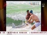 男子徒手抓鲨鱼走红网络