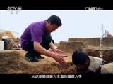 《探索发现》 20151020 2015考古进行时之日照尧王城