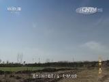 [探索发现]帝陵 第一集 汉高祖 长陵 长陵邑如何发挥重要的政治与军事作用