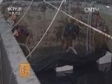 大黄鱼海上网箱养殖(20160131)