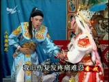 三请樊梨花(3) 看戏 2016.05.12 - 厦门电视台 00:39:09