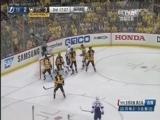 [NHL]季后赛:坦帕湾闪电VS匹兹堡企鹅 第三节