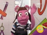 [动物好伙伴]小猪信箱:招潮蟹