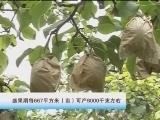 黄冠梨栽培技术