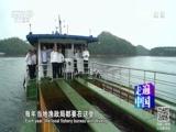 《走遍中国》 20170110 4集系列片《生态淳安》(1)为了一湖秀水