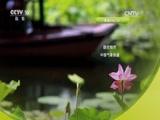 节气——时间里的中国智慧(三)夏长万物 00:36:38