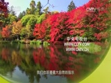 节气——时间里的中国智慧(六)清秋月圆 00:36:53