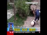 朱广权:熊猫抱大腿让你笑出腹肌