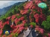 [视频]美丽中国