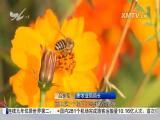 厦视新闻 2017.5.10 - 厦门电视台 00:24:43