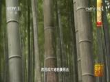 《中国影像方志》第1集 浙江安吉篇 00:39:47