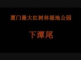 【看见厦门微视频征集】厦门最大红树林湿地公园——下潭尾 00:02:02