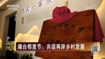 [海峡两岸]湖台邻里节:共话两岸乡村发展
