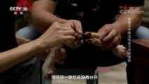[味道]四季味道(86) 烩面 羊蹄 阜阳临泉县