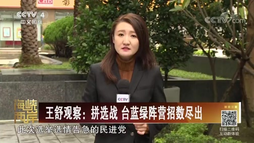 [海峡两岸]王舒观察:拼选战 台蓝绿阵营招数尽出