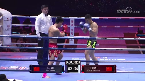 [拳击]世界功夫之王争霸赛 第九期