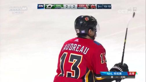 [NHL]常规赛:达拉斯星VS卡尔加里火焰 第三节