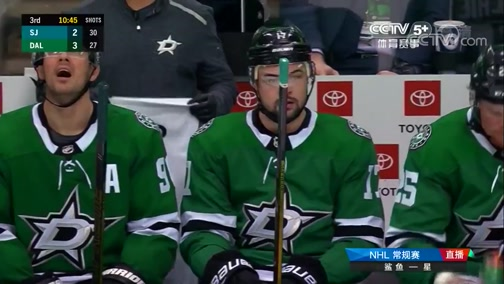 [NHL]常规赛:圣何塞鲨鱼VS达拉斯星 第三节