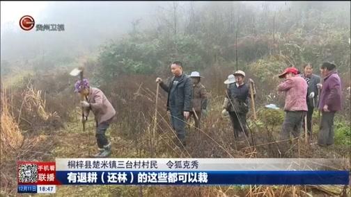 [贵州新闻联播]桐梓:农闲时节种竹忙