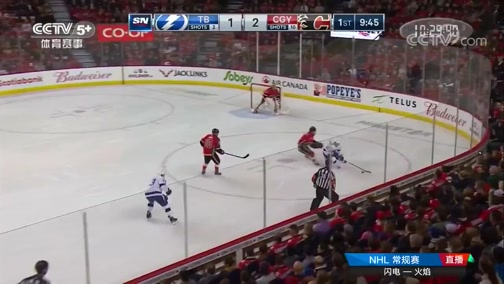 [NHL]常规赛:坦帕湾闪电VS卡尔加里火焰 第一节