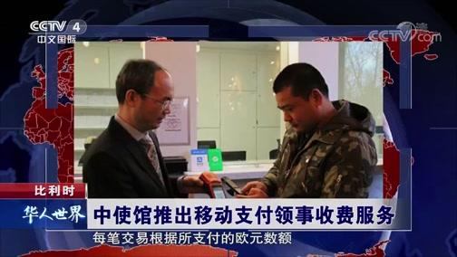 中使馆推出移动支付领事收费服务 华人世界 2019.01.04 - 中央电视台 00:00:47