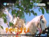 《平辽王》(18) 斗阵来讲古 2019.1.9 - 厦门卫视 00:29:37
