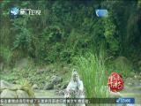 平辽王(22)斗阵来讲古 2019.01.15 - 厦门卫视 00:30:16