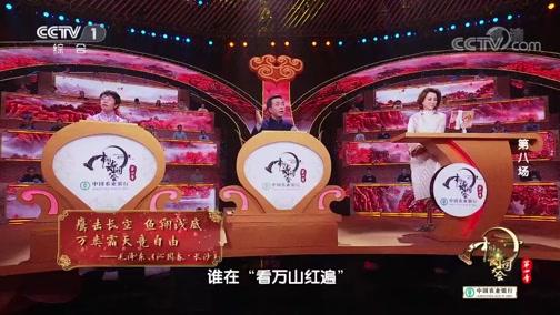 《中国诗词大会》第四季 20190212 第八场