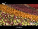 炫彩生活(房产财经版) 2019.02.19 - 厦门电视台 00:10:59