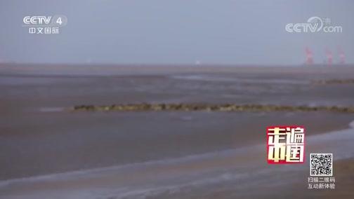 5集系列片《大风歌》(3) 追风逐浪 走遍中国 2019.03.14 - 中央电视台 00:25:51