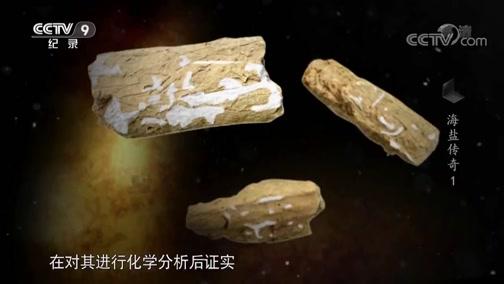 《海盐传奇》古人用来煮盐的工具——盔形器