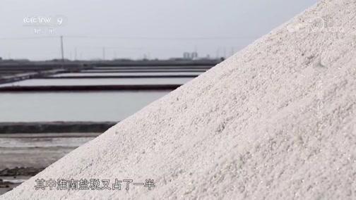 """《海盐传奇》""""折中法""""制度"""