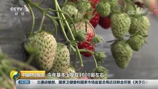 《中国财经报道》 20190320 15:00