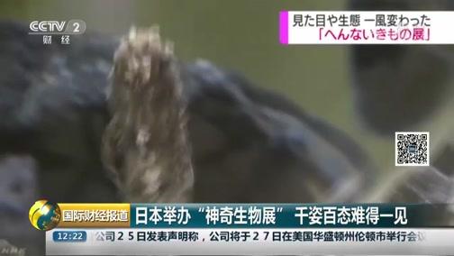 """[国际财经报道]日本举办""""神奇生物展"""" 千姿百态可贵一见"""