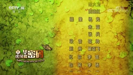 《芝麻开门》 20190511 中华虎凤蝶密码