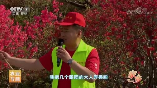 《乡村大世界》 20190518 家乡:安徽·岳西