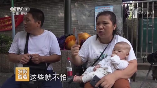 《聚焦三农》 20190705 你在他乡还好吗——晋阳街75号(上)