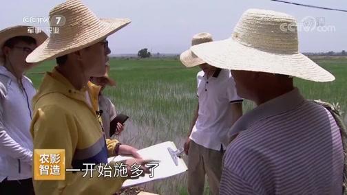 """《聚焦三农》 20190714 农民如何不再""""谈肥色变"""""""