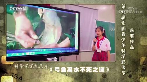 [芝麻开门]第九届全国青少年科学影像节获奖作品:《弓鱼离水不死之谜》