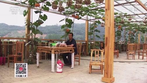[聚焦三农]小作坊如何成为脱贫大产业